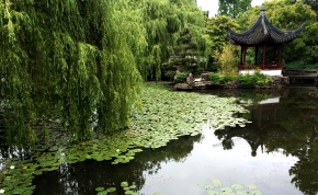 Escape to the East at Vancouver's ChineseGarden