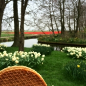 Stroopwafel break