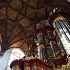 Wood ceiling and organ at St. Bavo