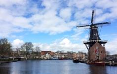 Windmill in Haarlem