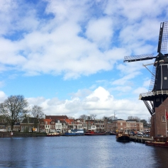 Windmill in Haarlem
