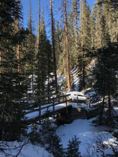 Wooden bridge over Engineer Creek