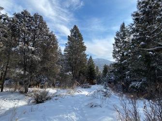 Hiking the Spirit Trail