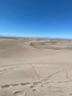View from the top with Star Dune in the distance