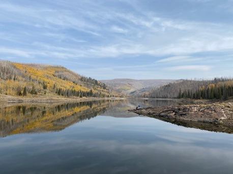 Serene Shaw Lake