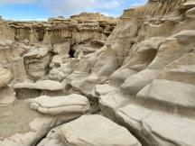 Sandstone or dinosaur bones?